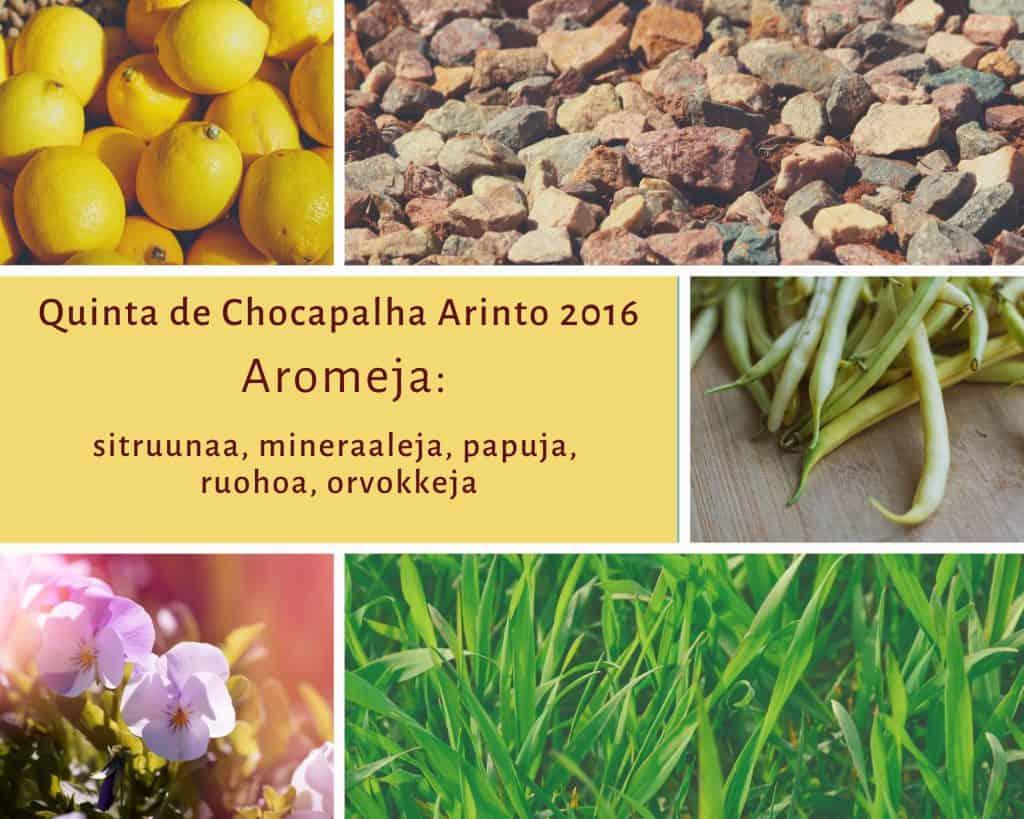 Aromikortti valkoviini Quinta de Chocapalha Arinto 2016, Viinihetki