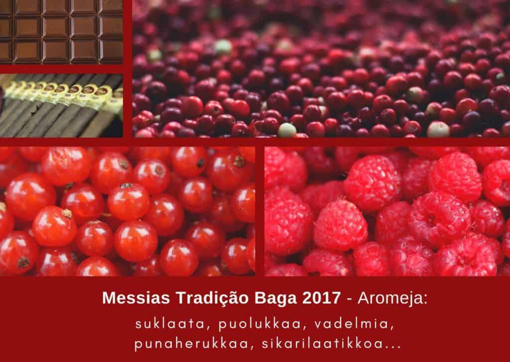 Aromikortti: portugalilainen punaviini Messias Tradição Baga 2017, Viinihetki