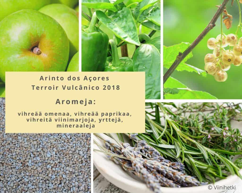 Aromikortti (©viinihetki), Arinto dos Açores Terroir Vulcânico 2018, viinihetki.fi