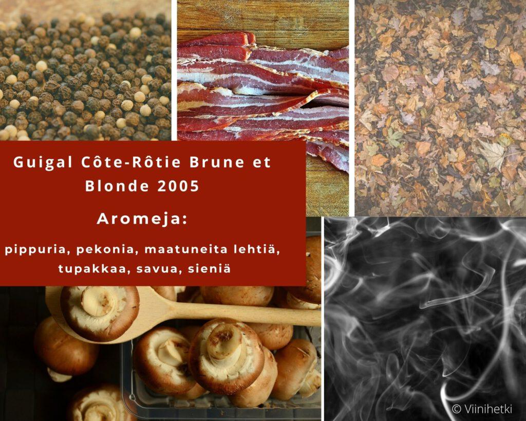 Aromikortti: Rhonen alueen punaviini Guigal Côte-Rôtie Brune et Blonde 2005, Viinihetki