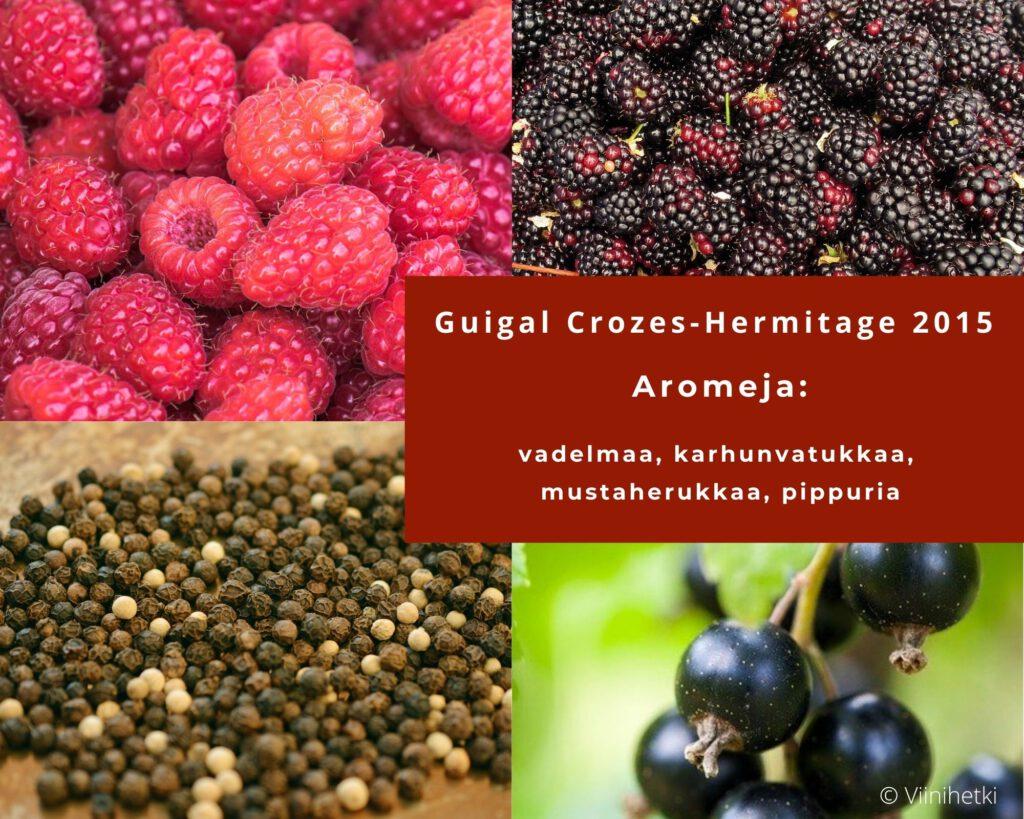 Aromikortti: Rhonen alueen punaviini Guigal Crozes-Hermitage 2015, Viinihetki