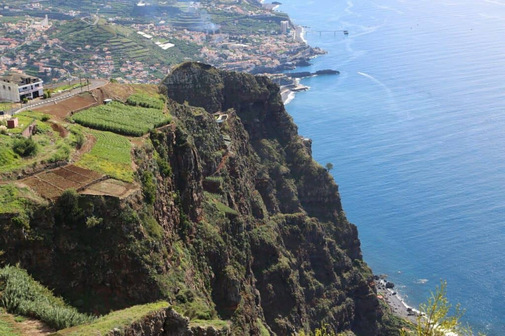 Madeira, Viinihetki
